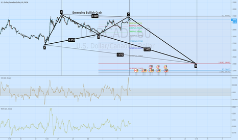USDCAD: Emerging Bullish Crab