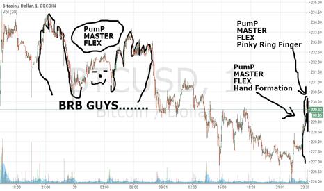 BTCUSD: Pump Master Flex Hits the Chart