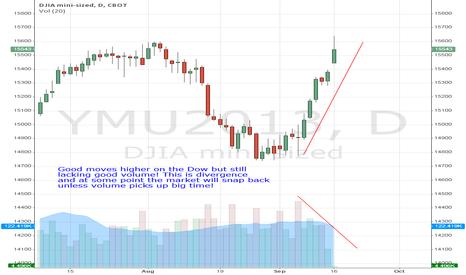 YMU2013: Dow