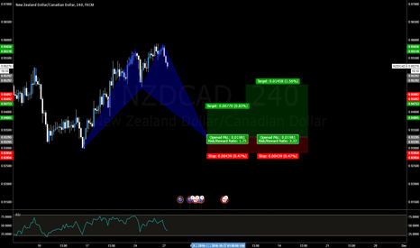 NZDCAD: NZDCAD Bullish Shark