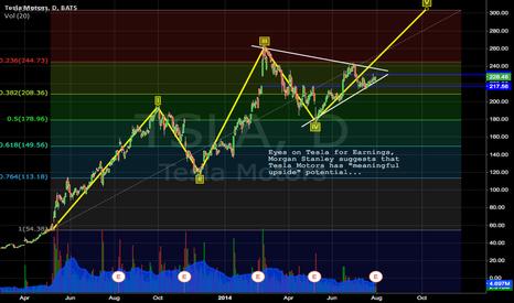 TSLA: Medium Term Target @ $244.73 with Elliott Wave Cycle
