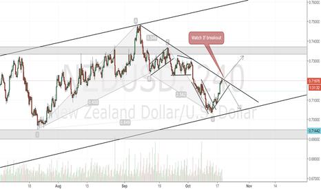NZDUSD: NZDUSD 4H Chart.