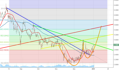 USAPD: USAPD cup and handle