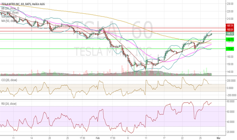TSLA: TSLA possible oppurtunity to go short in the short term