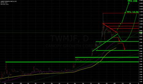 TWMJF: In 2017 again a Highflyer ?
