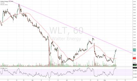 WLT: $WLT 60M