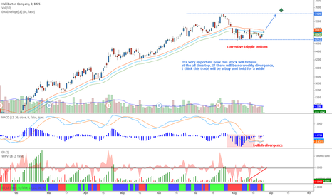 HAL: Halliburton Company - Another stock going to its top