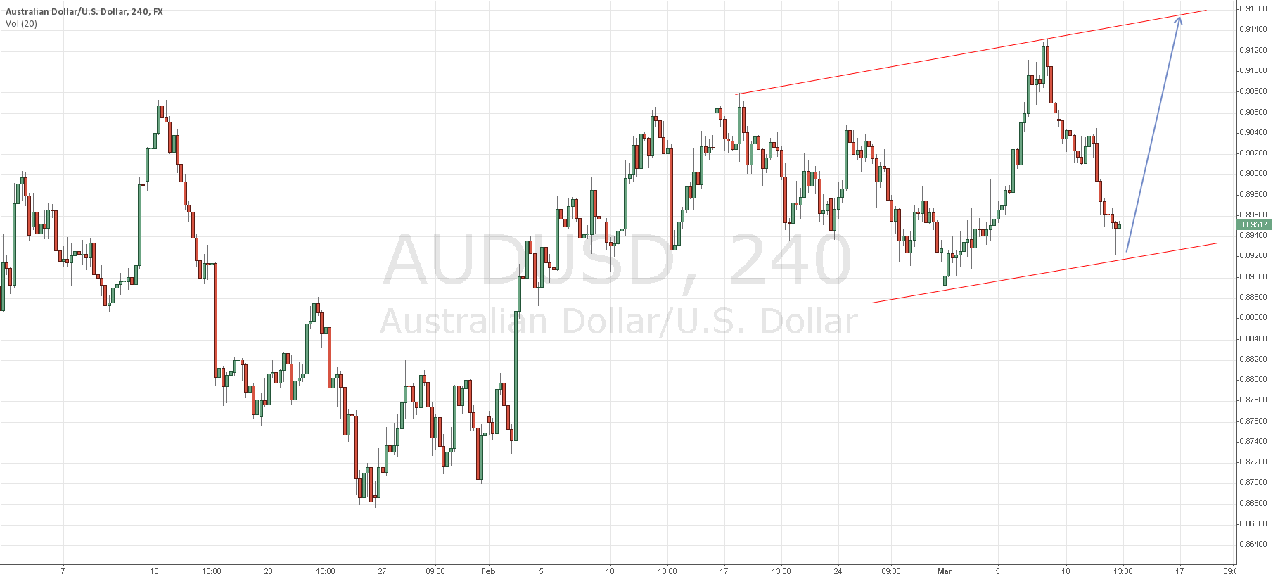 AUDUSD Long from Lower Trend Line (0.892X/3X)