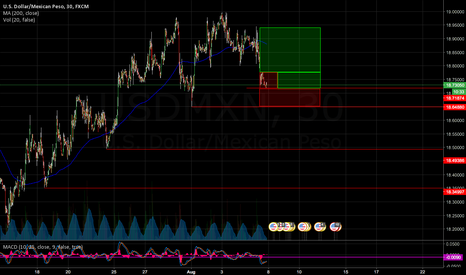 USDMXN: Just my thoughts right now..