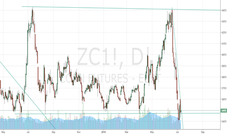 ZC1!: corn decider report tommorow