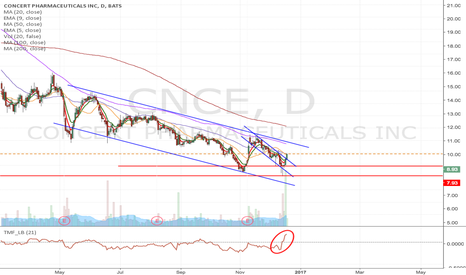 CNCE: CNCE - Speculative type of momentum Long from current level