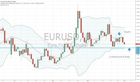 EURUSD: EURO stop hunt on day chart