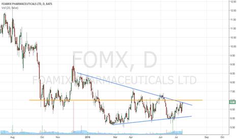 FOMX: Foamy