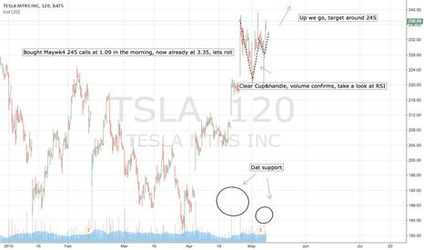 TSLA: $TSLA, LONG
