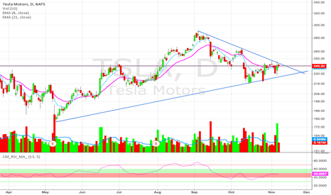 TSLA: Perfect storm to go higher?