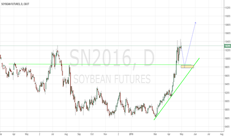 SN2016: Soybeans