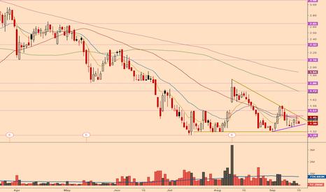 WPRT: Nice trendline to break