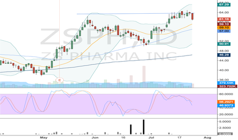 ZSPH: ZSPH Flag - Looking for swing entry around 20 dma.