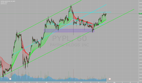 PYPL: PYPL about to pop again?