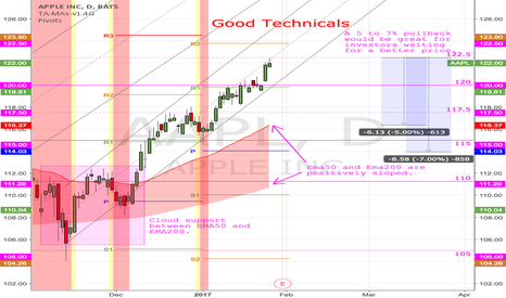 AAPL: (D) Good Technicals. No rush.
