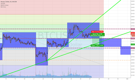 BTCUSD: Continued breakdown to consolidate around 231