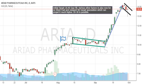 ARIA: Bull Flag forming?