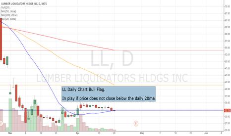 LL: LL Daily Chart Bull Flag