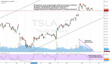 TSLA: Tesla - Pitstop before rally