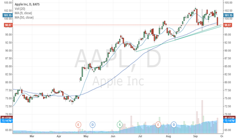AAPL: Apple On Critical Support
