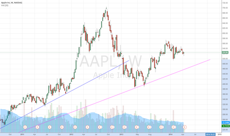 AAPL: AAPL Long Term Investment