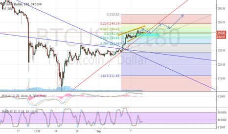 BTCUSD: Recent bull trend developing, target to 250-255
