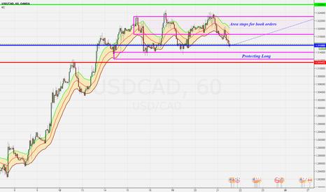 USDCAD: long usdcad