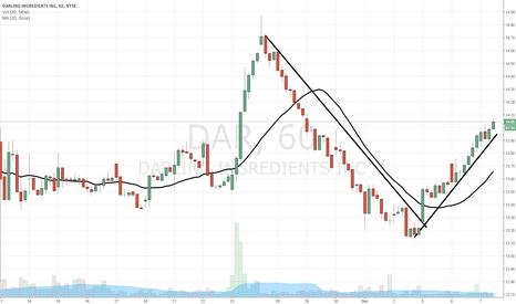 DAR: $DAR v-bottom