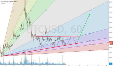 BTCUSD: Thanks so much, and now I'll squeeze your shorts