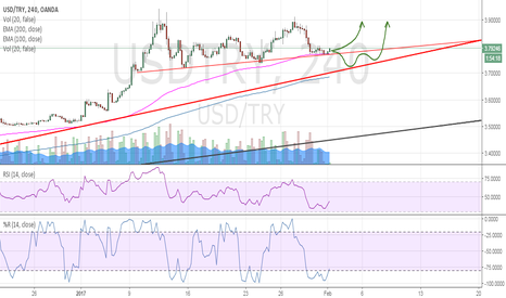 USDTRY: USD/TRY bullish rallye will continue but more slowly