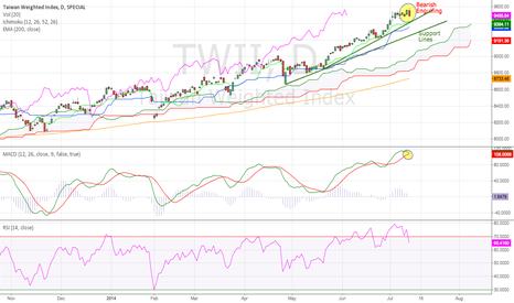 TWII: Taiwan Weighted Stock Index Daily (13.07.2014)Technical Analysis