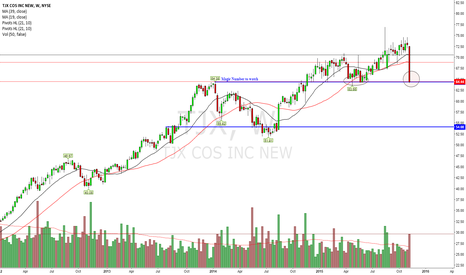 TJX: Will Price Hold Long Term Horizontal Support?