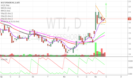 WTI: Daily beautiful Bull Flag