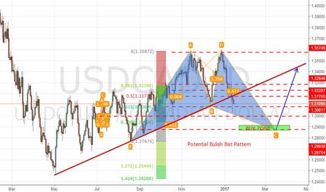 USDCAD: USDCAD LONG TERM. LONG OPP.