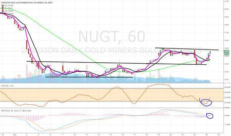 NUGT: $NUGT continuation trade