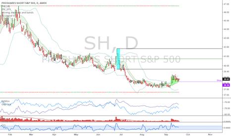SH: SH: Hedging my portfolio with SH longs