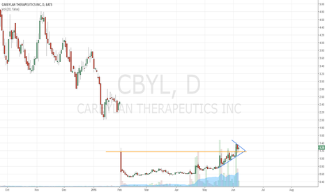 CBYL: Therapeutic