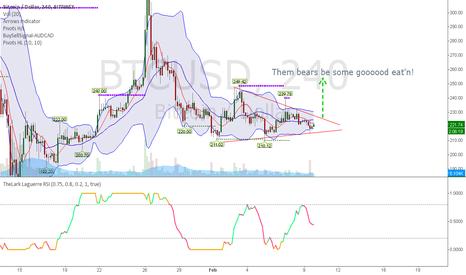 BTCUSD: Buy a Bitcoin, Save a Bitcoin