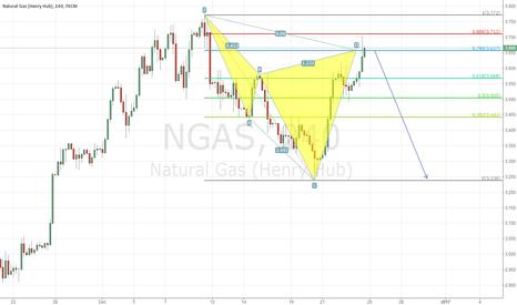 NGAS: NGAS