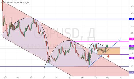 GBPUSD: GBP/USD_2017/02/23