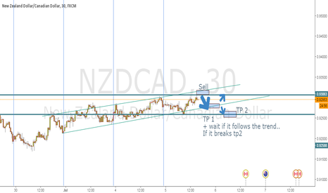 NZDCAD: Just an Idea, will the trend hold?