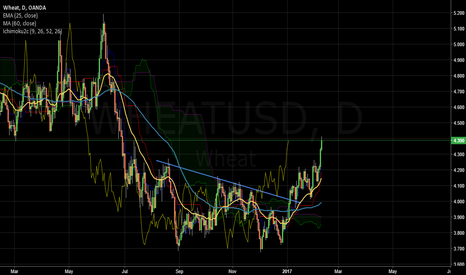 WHEATUSD: Wheat Bull market