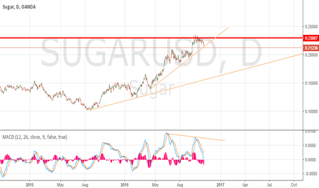 SUGARUSD: Sugar and trendline