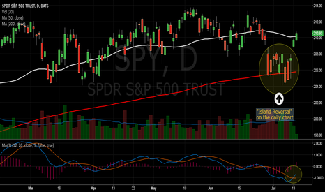 SPY: I SPY an Island Reversal on the daily chart