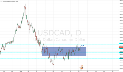 USDCAD: Usd Cad possible long